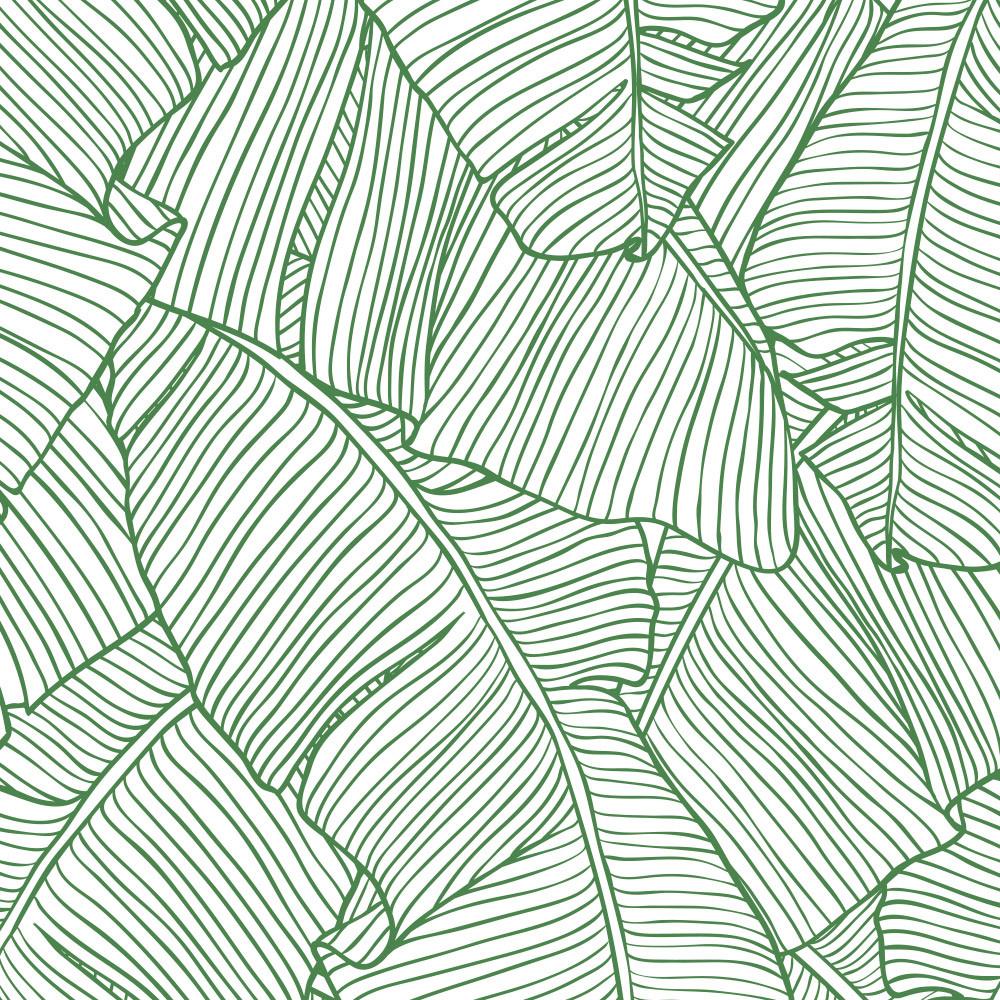 Papel de Parede Folhas de Palmeira