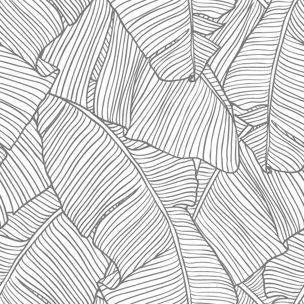 Papel de Parede Folha de Palmeira Cor Cinza Natureza