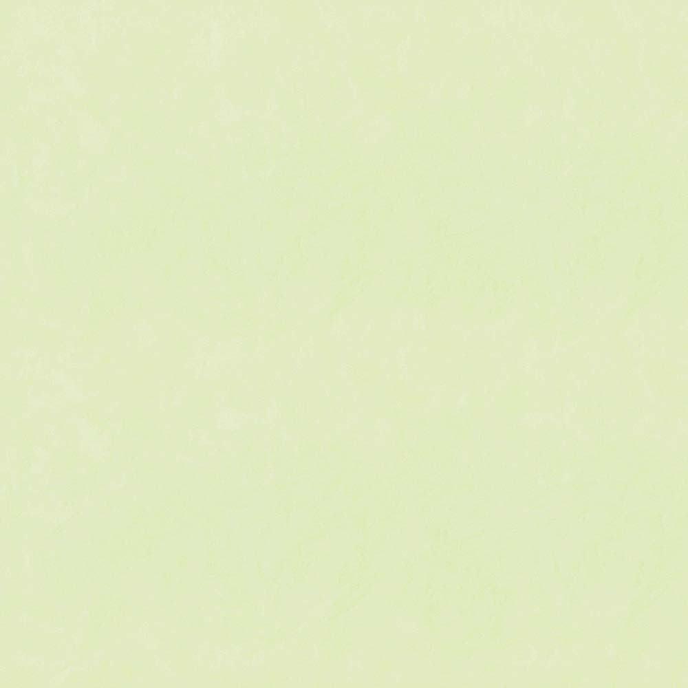 Papel de Parede Verde Claro - Disney