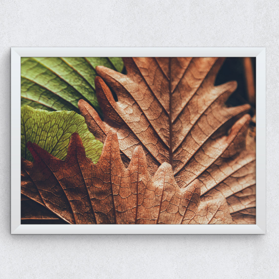 Quadro Decorativo Folhas de Outono Fotografia
