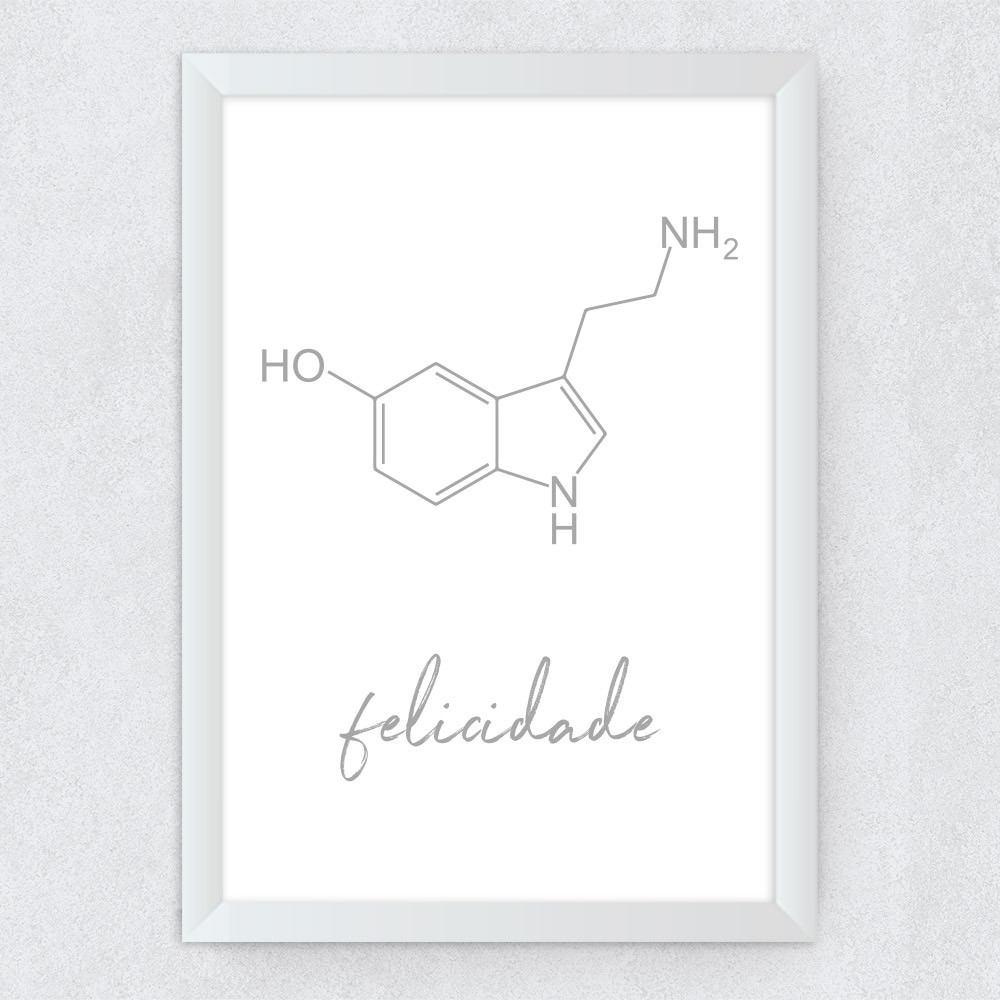 Quadro Decorativo Formula da Felicidade - Serotonina