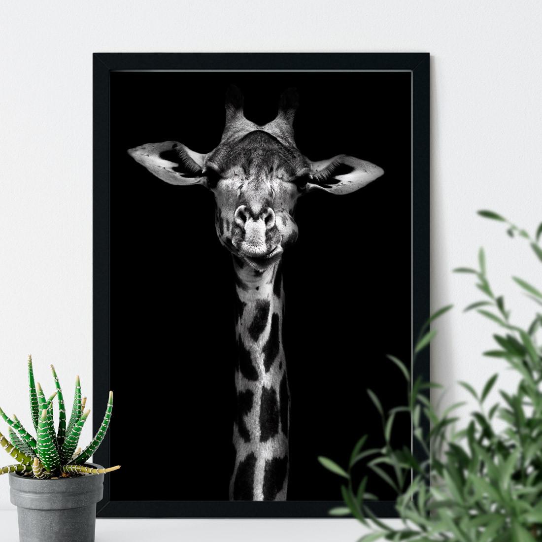 Quadro Decorativo Girafa Fotografia