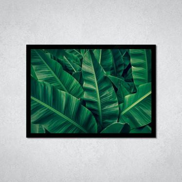 Quadro Decorativo Folhas de Bananeira