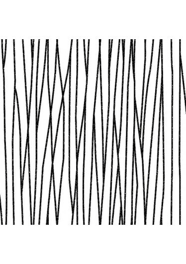 Papel de Parede Traços Finos Preto e Branco - Coruim