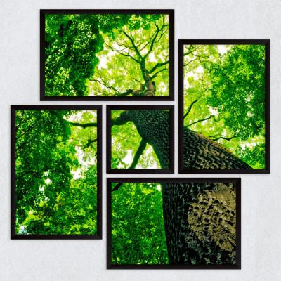 Conjunto de Quadros Decorativos Assimétrico Árvore Verde