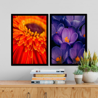 Conjunto de Quadros Decorativos Flor Vermelha Hortênsia Azul