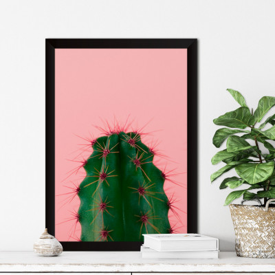 Quadro Decorativo Cacto Fundo Rosa