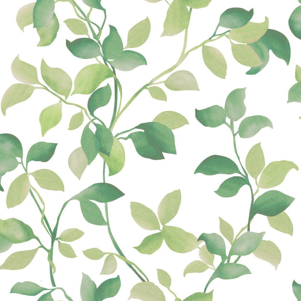 Papel de Parede Vinílico Folhas Verdes