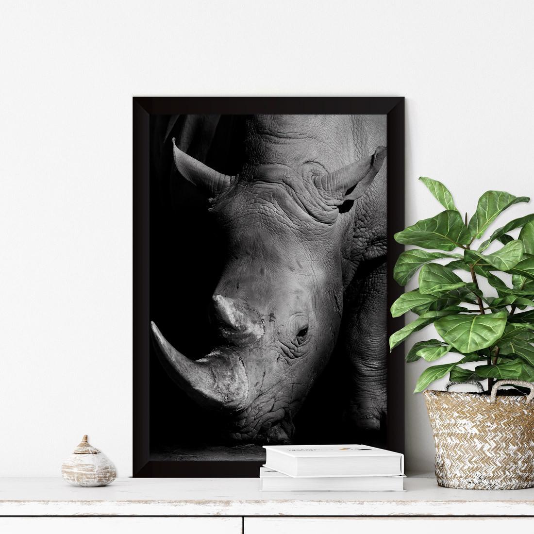Quadro Decorativo Rinoceronte