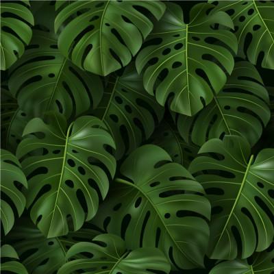 Papel de Parede Folhas Tropicais Fundo Rosa