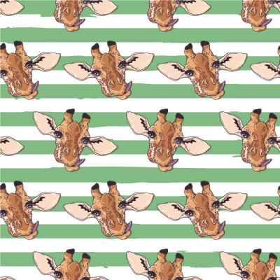 Papel de Parede Girafas