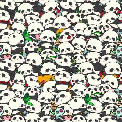 Papel de Parede Urso Panda Infantil