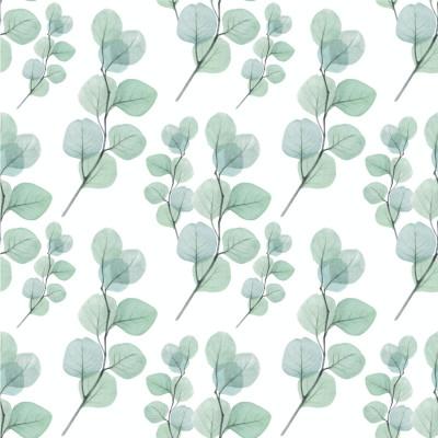 Papel De Parede Folhas Eucalipto