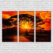 Quadro Decorativo Savana Africana - Em Canvas