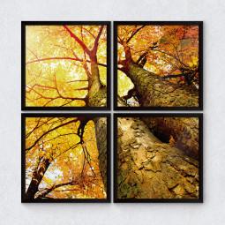 """Conjunto de Quadrinhos Decorativos """"Árvore Outono vista de Baixo"""""""
