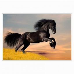 Painel Decorativo Cavalo