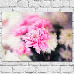 Quadro Decorativo A Beleza da Flor - Em Canvas