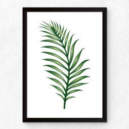 Quadro Decorativo Folha de Palmeira Tropical