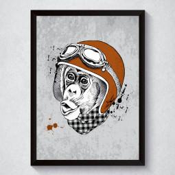 Quadro Decorativo Macaco
