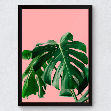 Quadro Decorativo Monstera Verde