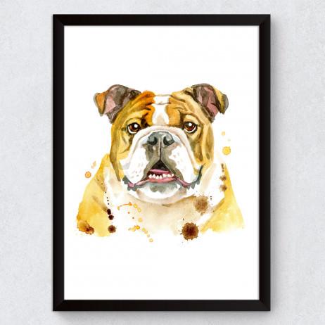 Quadro Decorativo Bulldog Inglês Aquarela